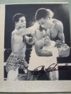 Cornelius Boza Edwards Former WBC Super Featherweight World Champion SIGNED Action Shot Wirephoto Image Against Hector Camacho