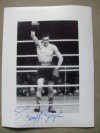 Barry McGuigan Former WBA Featherweight World Champion SIGNED Photo