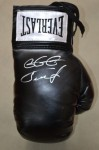 Gennady Golovkin Sensational Undefeated WBA And IBO Middleweight World Champion SIGNED Everlast Glove