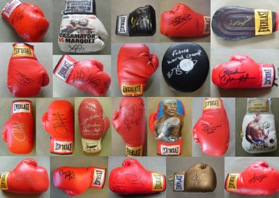 BIRTHDAY KNOCKOUT BONANZA In Celebration Of Our 10th Year We Would Like To Offer All Our Signed Gloves At A DISCOUNTED PRICE