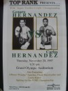 Floyd Mayweather Jr vs Angelo Nunez 12th Professional Fight Official Onsite Poster