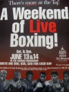 Floyd Mayweather Jr vs Tony Pep EXTREMEMLY RARE 1 of 6 Official Onsite Poster
